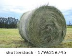 Large Bale Of Hay On A Freshly...