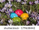 spring still life   colorful...