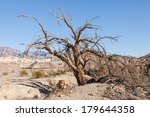 Furnace Creek is a census-designated place (CDP) in Inyo County, California, United States.