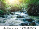Mountain Stream In Green Forest ...