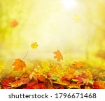 pile of autumn and falling...   Shutterstock . vector #1796671468
