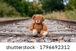 Lonely Teddy Bear Abandoned On...