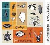 Decorative Print With Illinois...