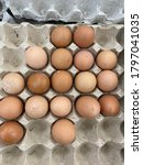 Chicken Eggs  Contain Within A...