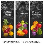 Fruits Sketch Banners  Tropical ...