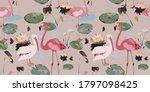 Water Lilies  Flamingo  Pelican ...