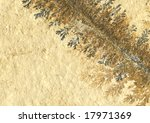 fossil plant background | Shutterstock . vector #17971369