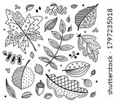 autumn vector set with leaves  ...   Shutterstock .eps vector #1797235018