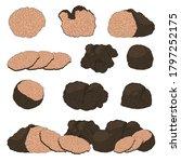 cartoon different black truffle ... | Shutterstock .eps vector #1797252175