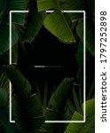 dark tropical summer design... | Shutterstock .eps vector #1797252898