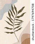 botanical print boho minimalist ... | Shutterstock .eps vector #1797694708