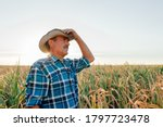 Side View Of A Mature Farmer...