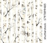 Birch Trees With Branches ...