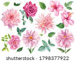 Set Of Watercolor Flowers And...