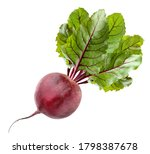 Isolated Beets. One Beetroot...