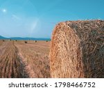 Hay Bale In Golden Field At...