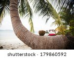Coconut And Hat On Palm Tree O...