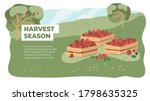 harvest season in farm land.... | Shutterstock .eps vector #1798635325