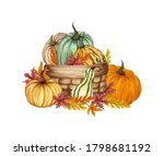Watercolor Pumpkin Composition...