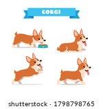 Cute Corgi Dog Animal Pet With...