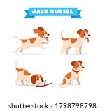 cute jack russel dog animal pet ... | Shutterstock .eps vector #1798798798