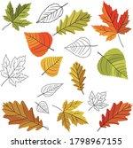 various autumn leaves seamless... | Shutterstock .eps vector #1798967155