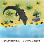 3d Image  Alligator By The...