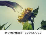 retro image of sunburst over a... | Shutterstock . vector #179927732