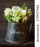 Beautiful white flowers in vintage watering can on old garden board. - stock photo