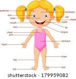 vocabulary part of body | Shutterstock . vector #179959082