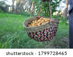 A Man Carry Basket Filled With...