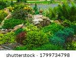 Beautiful Original Garden...
