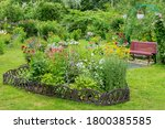 Part Of The Garden Plot Of A...