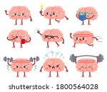 brain characters. happy brains... | Shutterstock .eps vector #1800564028