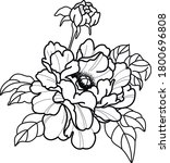 two flower tattoo art bloom... | Shutterstock .eps vector #1800696808