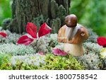 The White Mushroom Grows In Th...