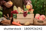 Farmer With Eco Fruit And...