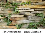 Stone Wall With Green Moss...