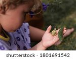 Little Girl With Snail On A...