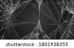 cobweb realism set. isolated on ... | Shutterstock .eps vector #1801938355