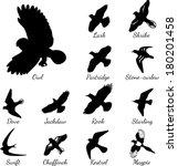 set of black isolated vector... | Shutterstock .eps vector #180201458