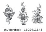 collection of black and white... | Shutterstock .eps vector #1802411845
