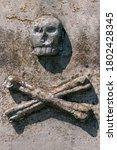 Skull With Bones. In...