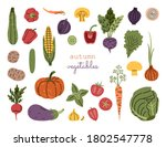 big autumn harvest vegetables ... | Shutterstock .eps vector #1802547778