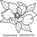 flower artwork tattoo design  | Shutterstock .eps vector #1802649745