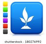 plant icon on square internet...