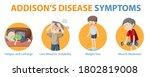 medical infographic of addison... | Shutterstock .eps vector #1802819008