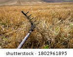 Rustic Rake In A Harvested...