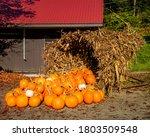 Pumpkin Cornucopia In The Fall