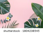 tropical palm tree leaf on a... | Shutterstock . vector #1804238545